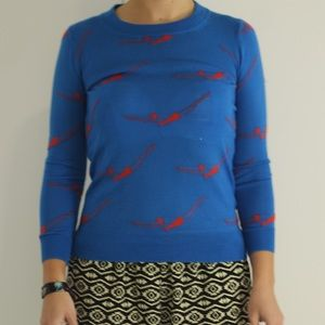 J. Crew Sweaters - Bright Blue J. Crew Sweater with Red Swimmers